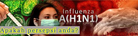 H1N1-persepsi